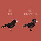 Know Your Birds VII by Teo Zirinis