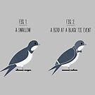 Know Your Birds IX by Teo Zirinis