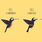 Know Your Birds X by Teo Zirinis
