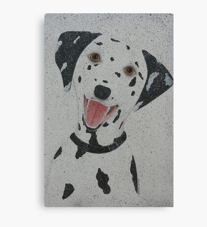 Dalmation Canvas Print