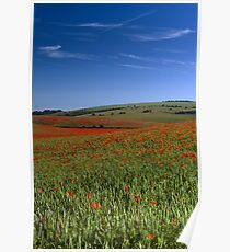 Land of Poppies 1 Poster
