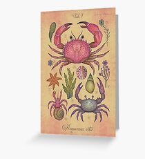 Marine Life I Greeting Card