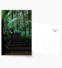 Triplet Falls Stairs Postcards