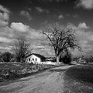 111th  Street Farm  Erie, Colorado by Pamela Hubbard