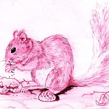 Squirrel in the Pink by Heatherian