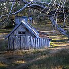 Wallaces Hut by Peter Hammer
