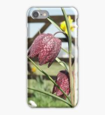 Snakesheads and Daffodils iPhone Case/Skin