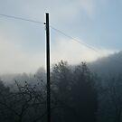 Fog by Ilva Beretta