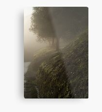 magic Metal Print