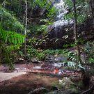 Adelina Falls at South Lawson Waterfall Circular Walking Track by Danielasphotos