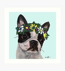 Cute Boston Terrier Art, Boston Terrier Flower Crown Art Print