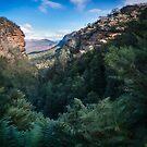 Blue Mountains Vista from Leura Cascades walking track by Danielasphotos