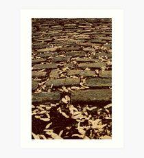 [cobblestones] Art Print
