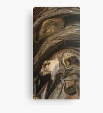 Metamorphic Canvas Print