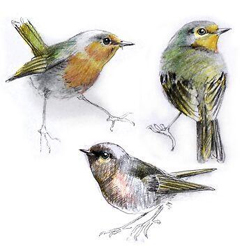 three birds by denisovanv