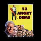 13 Angry Dems by csthetruth