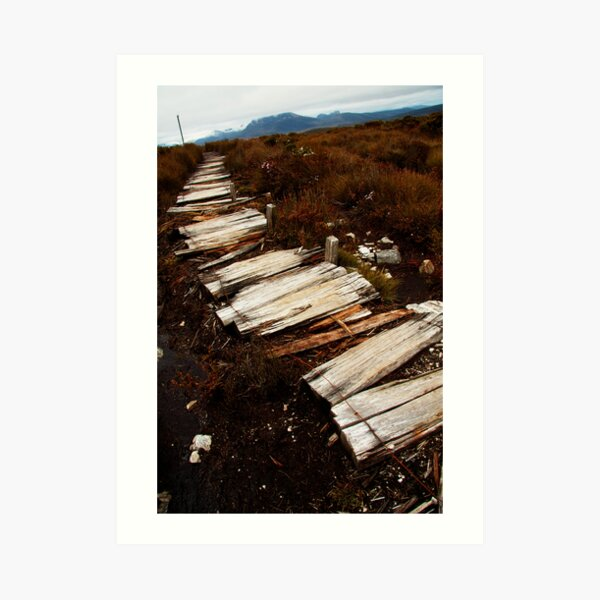 Waterfall Valley to Lake Windermere, Overland Track, Tasmania Art Print