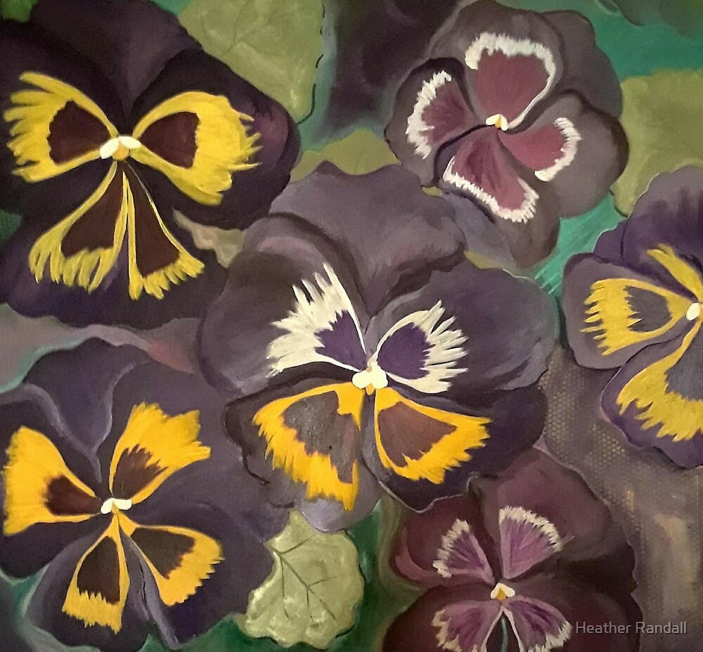 Pansy Garden by Heather Randall