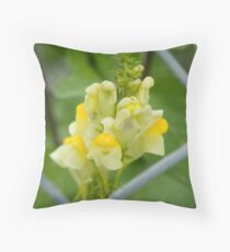 Butter and Eggs (Linaria Vulgaris) Throw Pillow