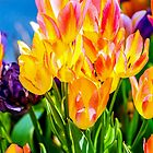 Festival Of Tulip Flowers by funnypixel