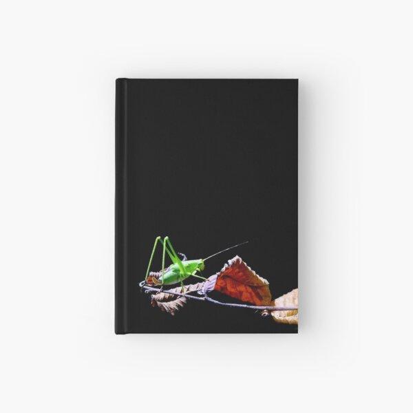 Katydid at Night Hardcover Journal