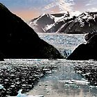 Small boat lost In the Icefield by Nancy Richard