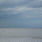 Kayak. by Billlee