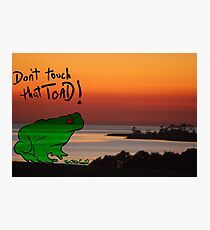 The Frog goes 2island Photographic Print