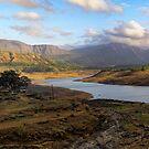 Arthur lake panorama :: 30in X 10in by Tridib Ghosh