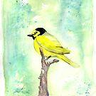hooded warbler watercolor by RavensLanding