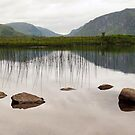 At Glenveagh #1 by Agnes McGuinness