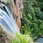 Purlingbrook Falls - Springbrook, Australia by GypsySoulImages