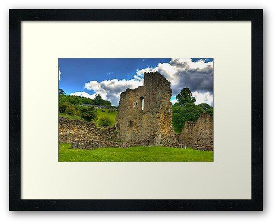 Kirkham Abbey Ruins #2 by Trevor Kersley