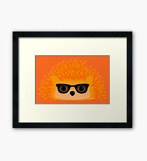 Sedgewick Rocking Orange Orbison Framed Print