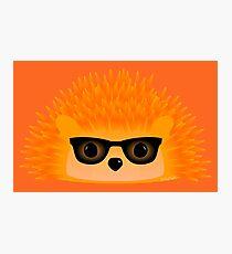 Sedgewick Rocking Orange Orbison Photographic Print