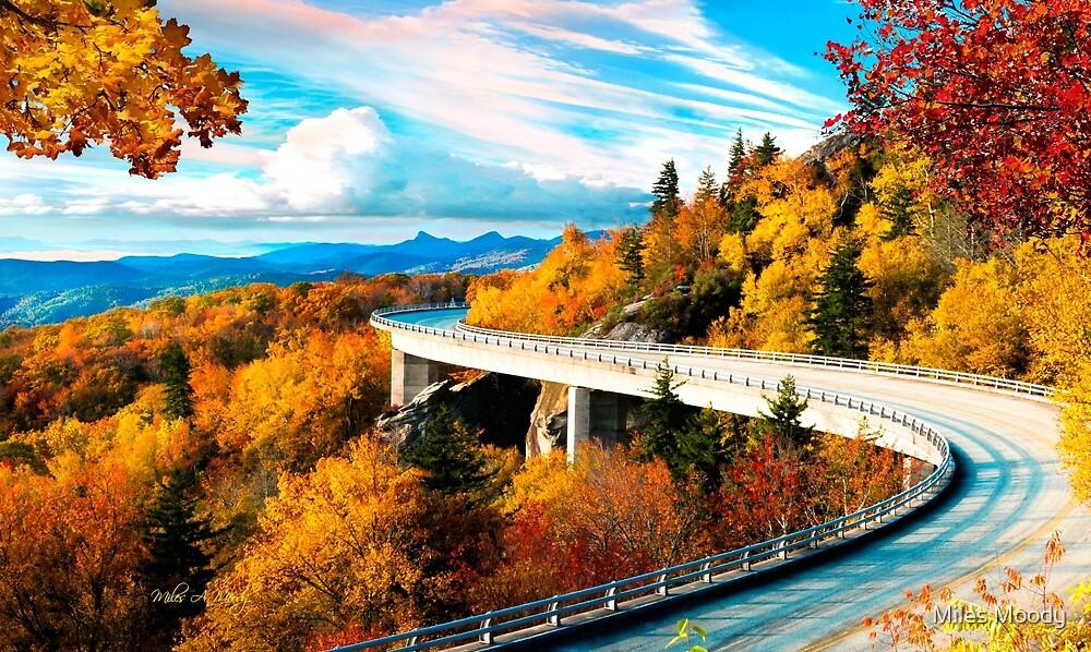 The Bridge  by Miles Moody