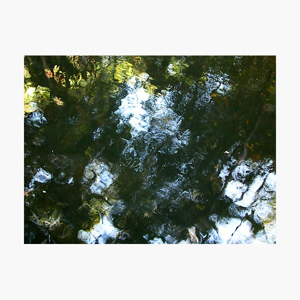 'Monet' in water Photographic Print