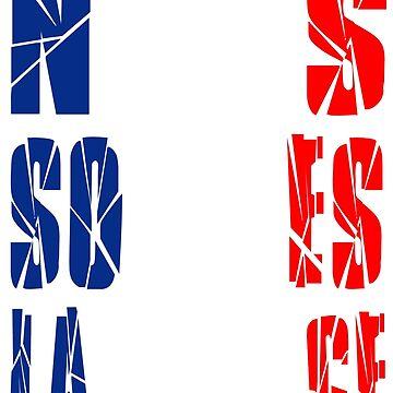 Nous Sommes La France by drixalvarez