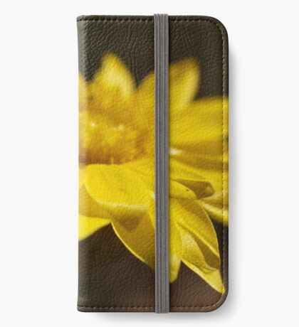 Rhodanthe oppositifolia  iPhone Wallet