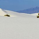White Sands - panoramic crop by Larry Costales