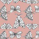 Moths: Pale Melon by Ben Geiger