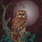 Tawny Owl Mistress of the Night by lottibrown