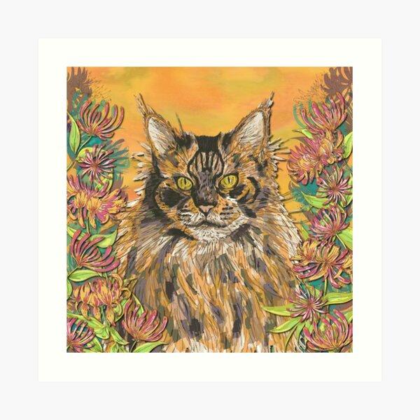 Honeysuckle Cat - Maine Coon Art Print