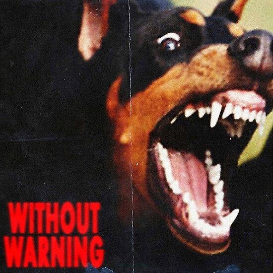 ohne Warnung 21 wilder x Offset x Metroboomin von g0vinda