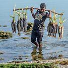 Fish Vendor by Werner Padarin