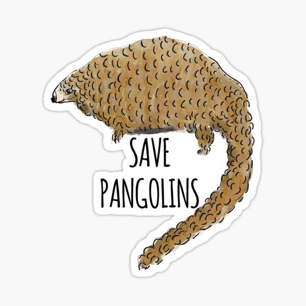 Save Pangolins: Cute Pangolin Design Sticker