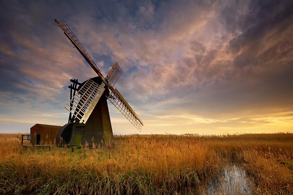Herringfleet, Suffolk by Ian Flindt