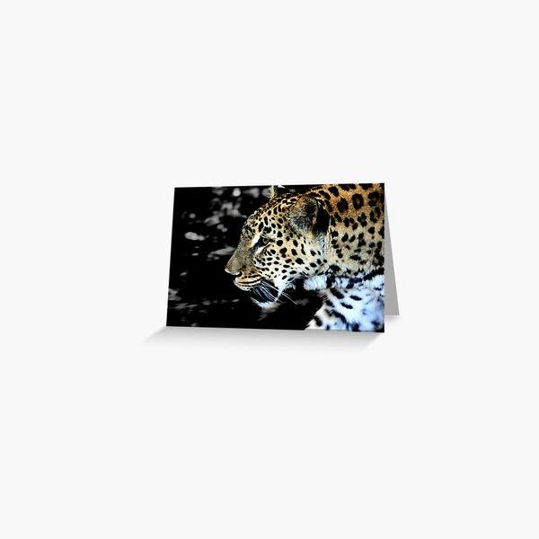 Persian Leopard Greeting Card