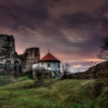 Castle of Levice at twilight by birba
