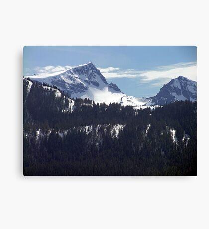 Strathcona Park Mountains Canvas Print